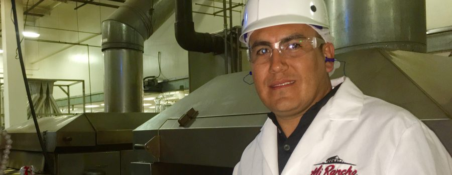Tortilla Manufacturing